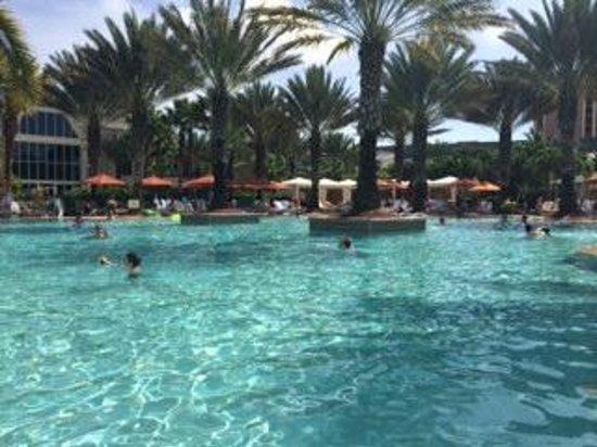 JW Marriott Marco Island Beach Resort: View of pool