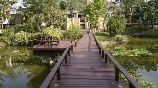 Crown Lanta Resort & Spa: Hotel