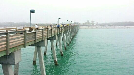 Venice Fishing Pier: Venice pier