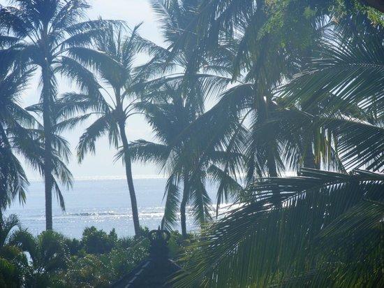 Nusa Dua Beach Hotel & Spa : vista do quarto