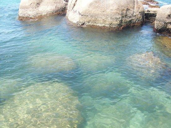 Tainha Beach : Camino por las rocas