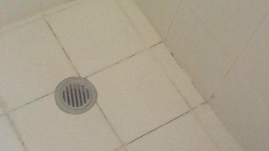 The Denman Hotel Thredbo: shower mould