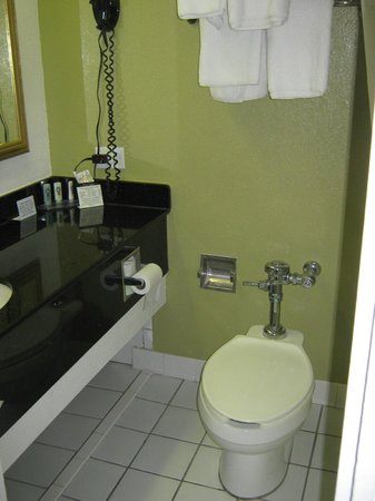Quality Inn Airport : Commercial toilet!?