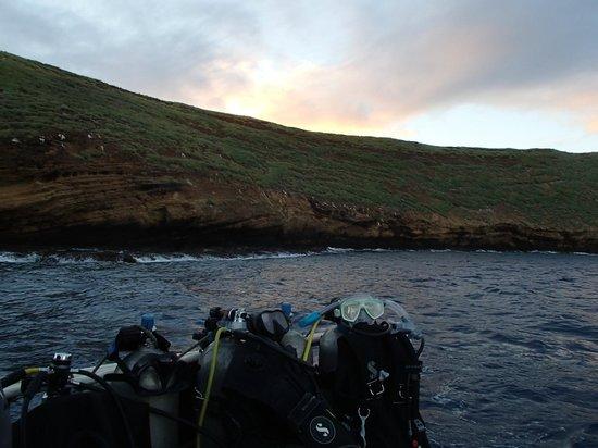 Prodiver Maui: dawn