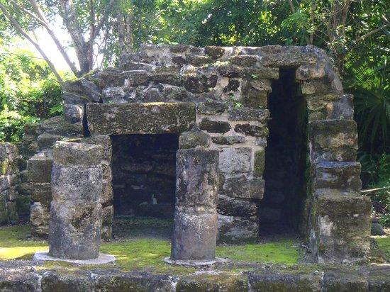 San Gervasio Mayan Archaeological Site: ruins