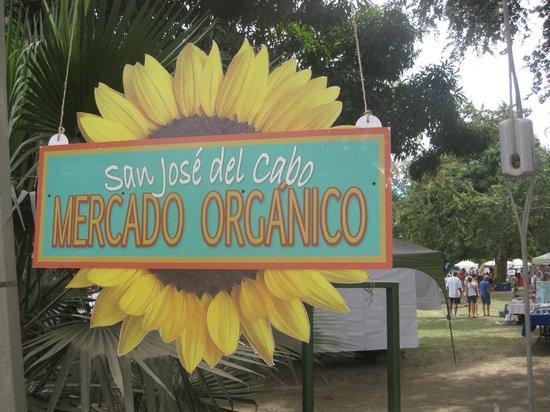 San Jose del Cabo Mercado Organico
