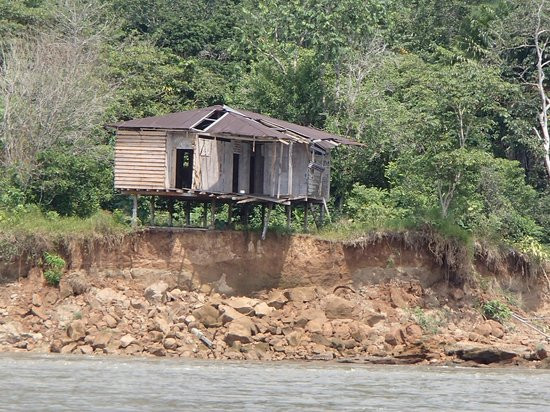 Manatee Amazon Explorer : House along the Napo River that will be washed away with the next rainy season