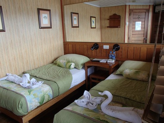 Manatee Amazon Explorer: Cabin