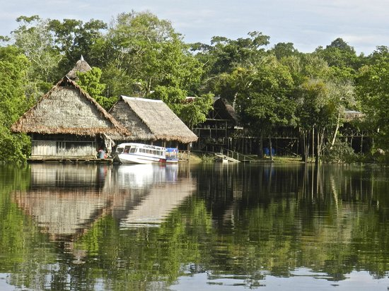 Amazonia Expeditions' Tahuayo Lodge: Tahuayo Lodge