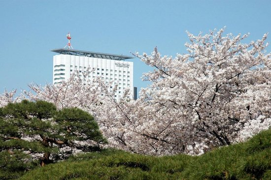 Hotel Century Southern Tower -View from Shinjuku Gyoen National Park in Spring