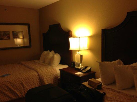 Embassy Suites by Hilton San Antonio Riverwalk-Downtown : Quarto