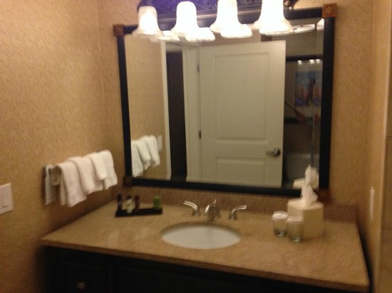 Embassy Suites by Hilton San Antonio Riverwalk-Downtown : Banheiro