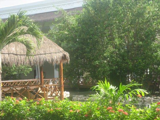 Grand Sunset Princess All Suites Resort: Grounds