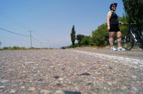 Mendoza Wine Bike Tour: Caminho do Valle do Uco