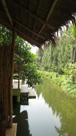 Asita Eco Resort: The river behind our room.
