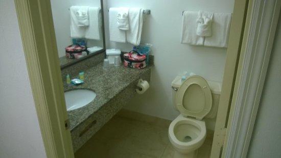 Tropical Winds Oceanfront Hotel: Bathroom
