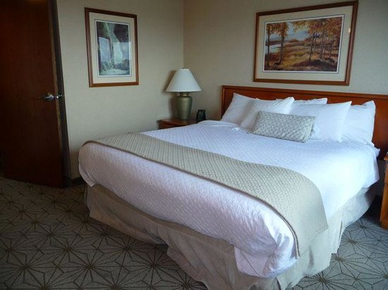 Embassy Suites by Hilton Portland Airport: King Bed