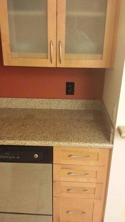 Residence Inn Little Rock Downtown: Dishwasher