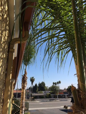 Stanford Inn & Suites: Outside our door #258