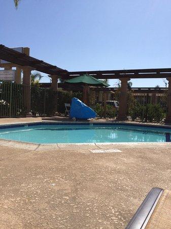 Stanford Inn & Suites: Pool Area,