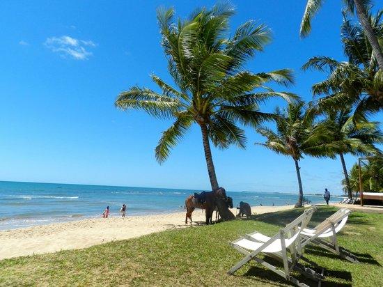 Tivoli Ecoresort Praia do Forte : Praia em frente ao hotel