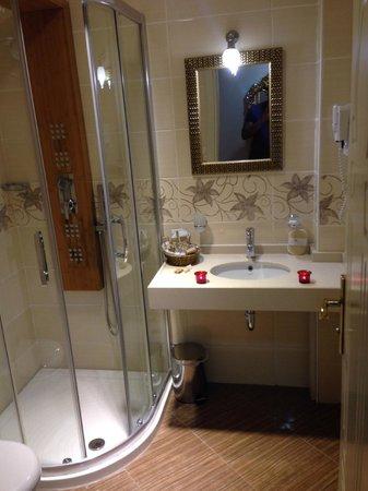 White House Hotel Istanbul : Bathroom