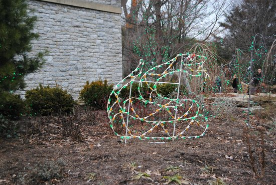 Cincinnati Zoo & Botanical Garden : An LED snake in front of the Reptile House. PNC Festival of Lights