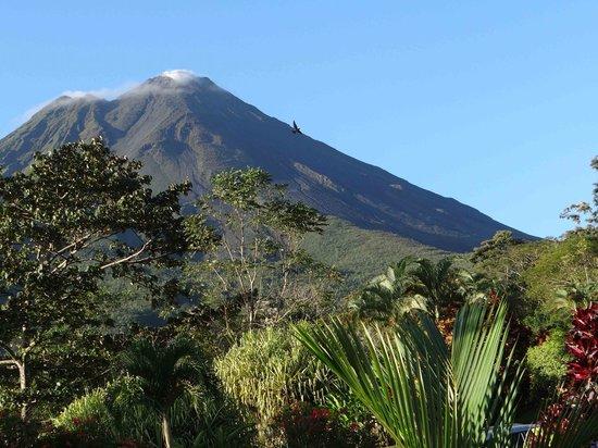Los Lagos Hotel Spa & Resort: Al fin, el volcán sin nubes. Desde la habitación.