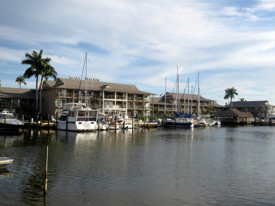 Cove Inn on Naples Bay: View from Cove Inn from the City Dock