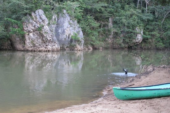 duPlooy's Jungle Lodge : Macal River beach at duPlooys
