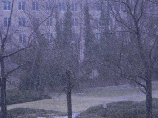State Plaza Hotel: vista do quarto durante a neve
