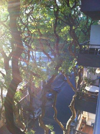 Esplendor Palermo Soho: Vista do quarto...rua tranquila e arborizada.