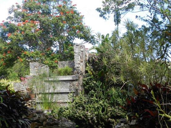 St. George Village Botanical Garden : sugar mill ruins
