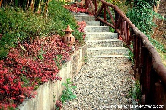 Baan Famui: Autumnal steps