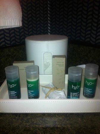 Kinzie Hotel : bathroom items