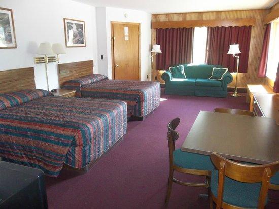 Tuskeegee Motel: Efficiency Unit