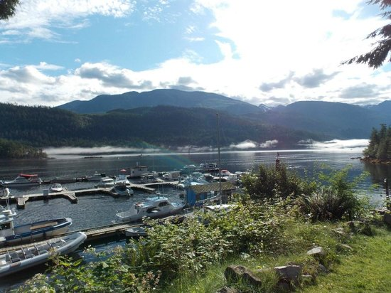 Backeddy Marine Pub: View from Picnic Area