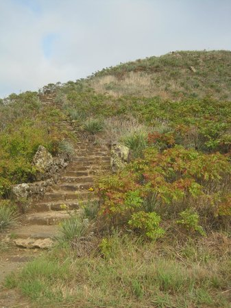 Coronado Heights: fun stairs that you can climb up instead of driving up