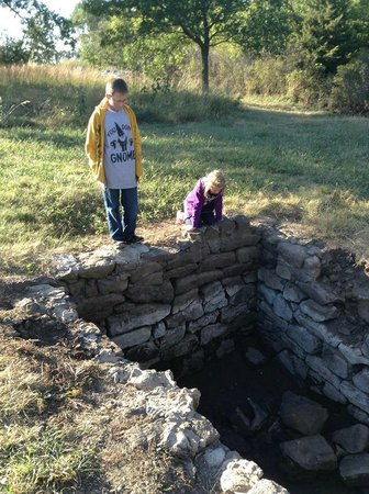 Hoglund Dugout: my kids checking it out