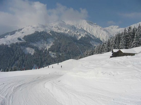 Mayrhofner Bergbahnen: Ski Area