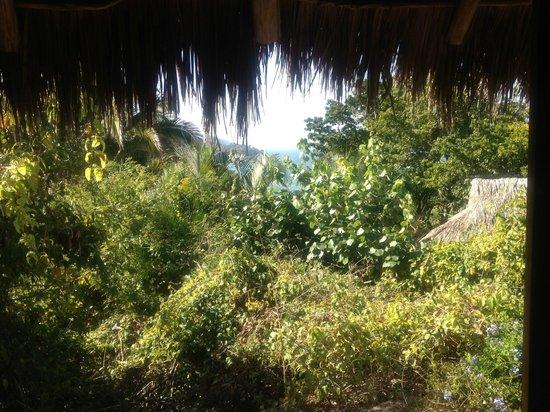 Haramara Retreat: View from Turquoise Casita