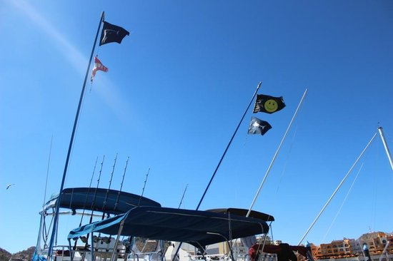Fish On - Private Charters : Catch Flags