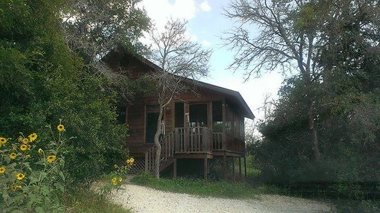 Decker Creek Bed & Breakfast & Biscuit : Treehouse Cabin