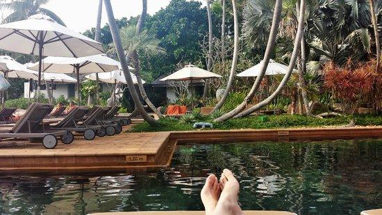 Marriott's Phuket Beach Club : the poool