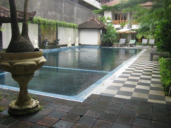 Taman Rosani Hotel & Villa: Pool area