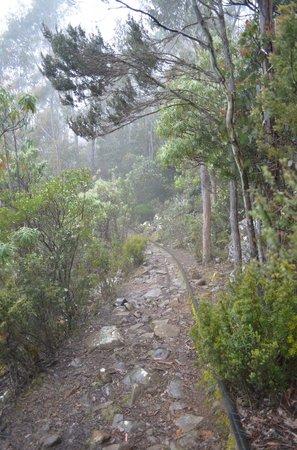 Mount Wellington (1)