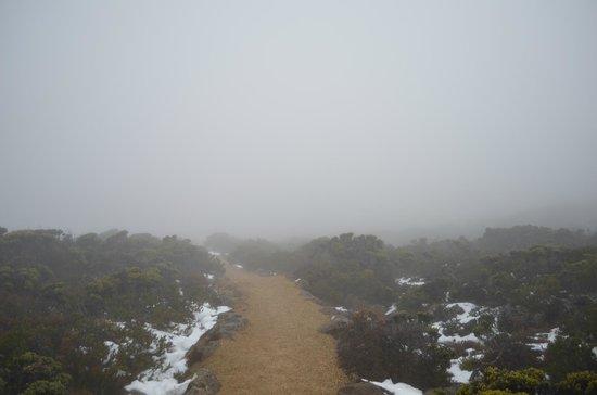 Mount Wellington (4)