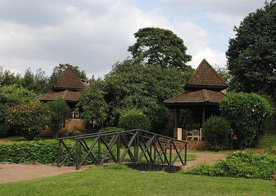 Nairobi Mamba Village: Mamba Village huts