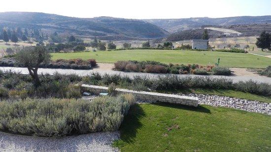 Minthis Hills Golf Club : #10 Tee