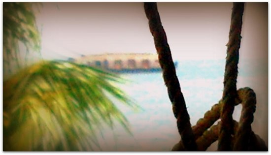 The World Backwaters : Distant houseboat shot from the restaurant..